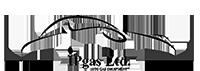 ipgas.bg logo
